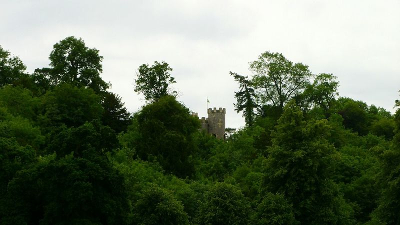 Castle In The Forest 🌲🏰🌲 Tree No People Outdoors Nature Low Angle View Beauty In Nature Tree Area Day Fairytale Castle Fairytale  Folly Architecture Magical Forest Woods Scenics Historical Building Tourist Attraction  Travel Destinations Tree Trees Built Structure Breathing Space Perspectives On Nature