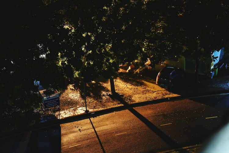 Night Road Night Shadow Tree Outdoors No People City Nature Original Photography Illuminated