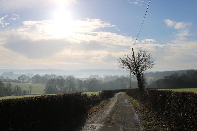 Country lane leading to local reservoir EyeEmNewHere Tree Rural Scene Agriculture Sunlight Field Road Plowed Field Sun Sky Foggy Empty Road Farmland