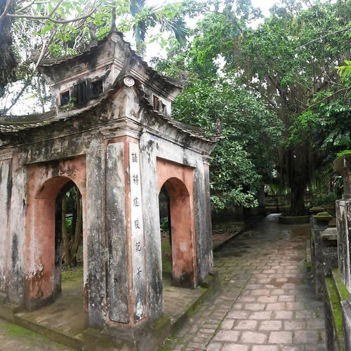 Architecture Ninh Bình South East Asia Vietnam Arch Architecture Belief Building Building Exterior Built Structure Day Entrance Footpath History Nature No People Old Outdoors Place Of Worship Plant Religion Stone Temple The Past Tree