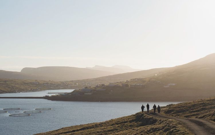 Hiking Nature Faroe Islands Sunset EyeEm Nature Lover EEA3 EyeEm Global Meetup Copenhagen