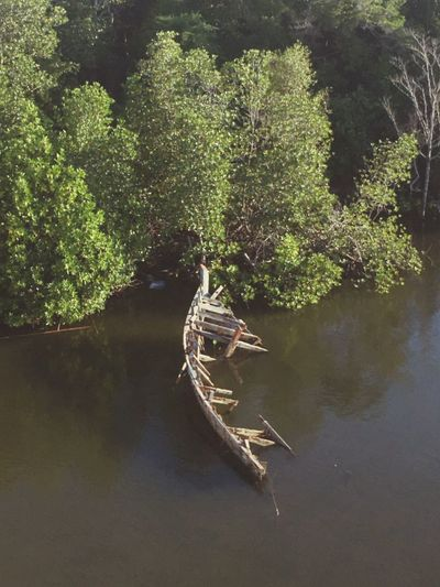 High angle view of boat in lake at forest