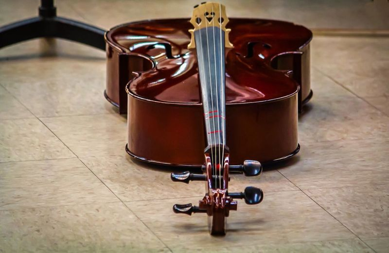 Now I lay thee Concert Photography Concert Concertphotography Kids Being Kids Kids School Life  Cello Musical Instruments Music Music Is Life Music Photography  Cellist School Concert Children_collection Musical Instrument Point Of View From My Point Of View POV