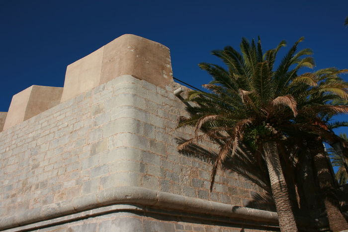Cobalt blue sky - I am in love. Architecture Blue Sky Castle Castle Walls Clear Sky Fortress Fortress Wall Palm Palm Tree Peñíscola