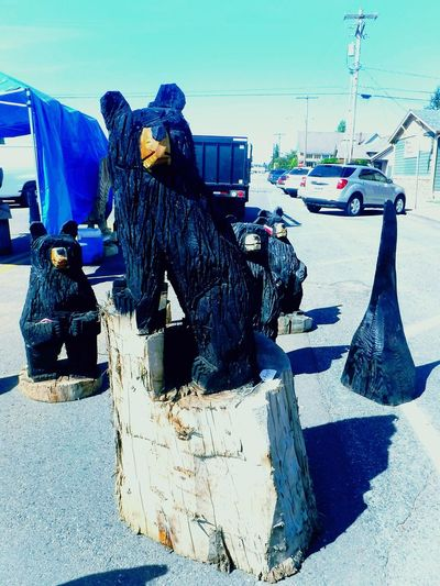 Colorsplash Colour Of Life Check This Out Native American Art Native American Indian Marysville,WA Tulalip Tribe Native Pride Bears