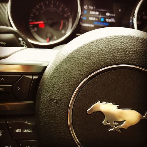 Inside warmth Mustang AmericanMuscle Carswithoutlimits Sexycars First Eyeem Photo