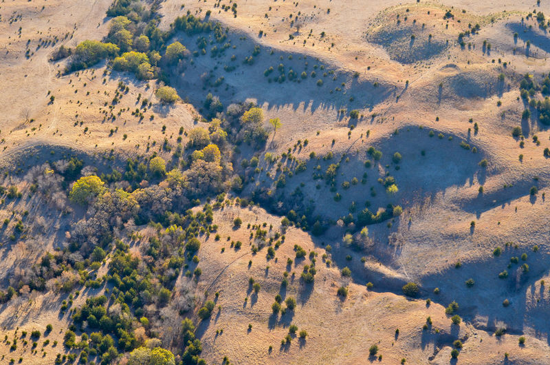 Aerial Shot Drought Shrubs South Dakota Trees Aerial Aerial Photography Aerial View Agriculture Arid Arid Climate Contours Countryside Drainage Grassland High Angle View Hills And Valleys Landscape Plains Prairie Rural Scene Terrain Topography Wildfire