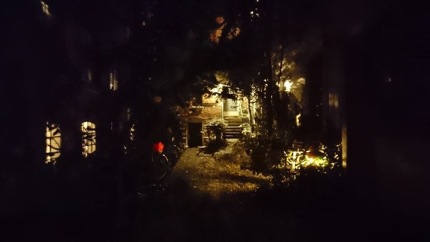 Backyard. Hamburg Germany Hh Backyard Backyard Photography Residential  Yard Trees Darkness Night Light Light And Shadow Door Mystery Obscure Tree Illuminated City