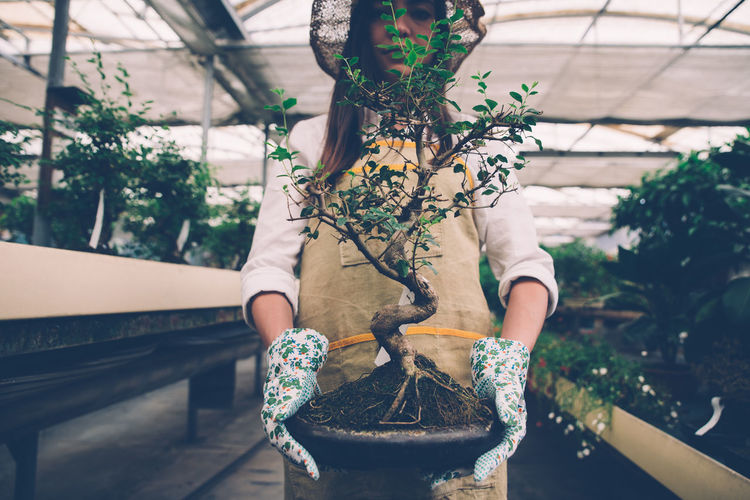 Woman holding plant in greenhouse