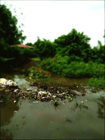 Nature River Water Garbage Careless Life People Danger Calamity