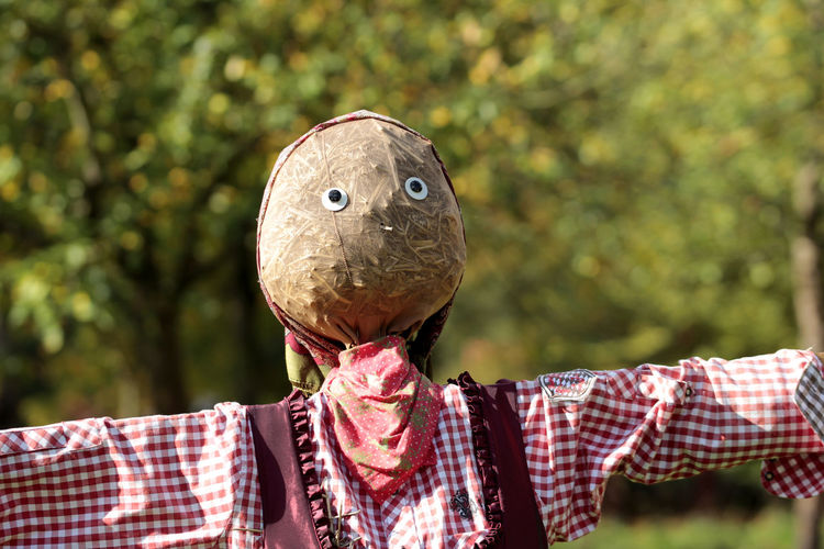 Close-up of scarecrow against trees