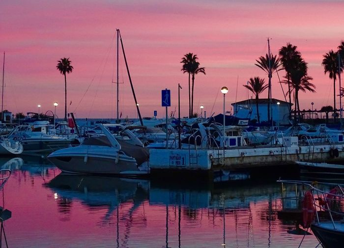 SPAIN Duquesa Sunset Nautical Vessel Water Moored Palm Tree Transportation Reflection Mode Of Transport