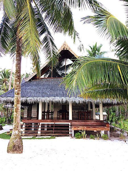 Makulay Resort Coconut Tree Built Structure In Front Of Cottage Tourist Resort Outdoors Vacations Siargao Island #EyeEmRockz #DomesticTravel #itsmorefuninthePhilippines #RonRon #iPhone6splus #photoBuff #RonieBoyCarnicer #badmintonplayer #BPO