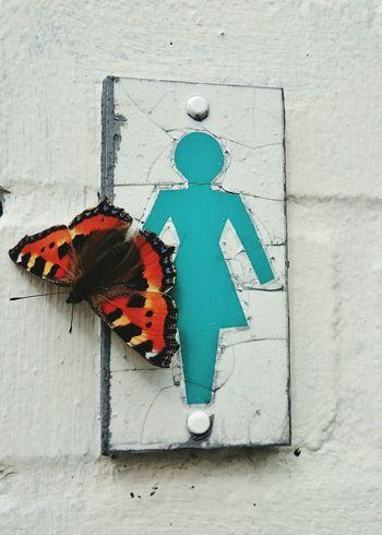 Ladies Butterfly Women Restroom Sign Signs Toilet Bathroom Toilette Ladiesroom