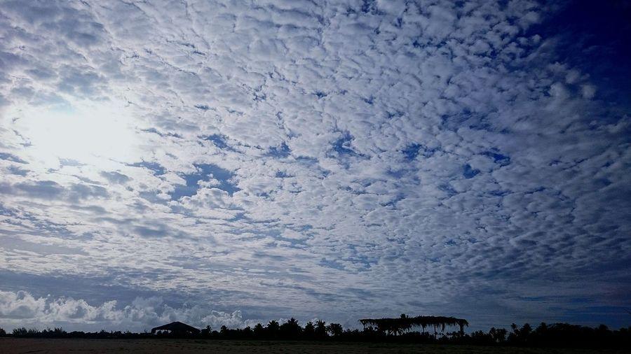 Brasil Brazil Seaside Landscape_Collection EyeEm Best Shots EyeEm Selects EyeEmNewHere EyeEm Gallery Ig Igers Sky Sky And Clouds Nuvens Céu CeuAzul Astronomy Bird Blue Silhouette Backgrounds Sky Landscape Sky Only Tranquil Scene Tranquility