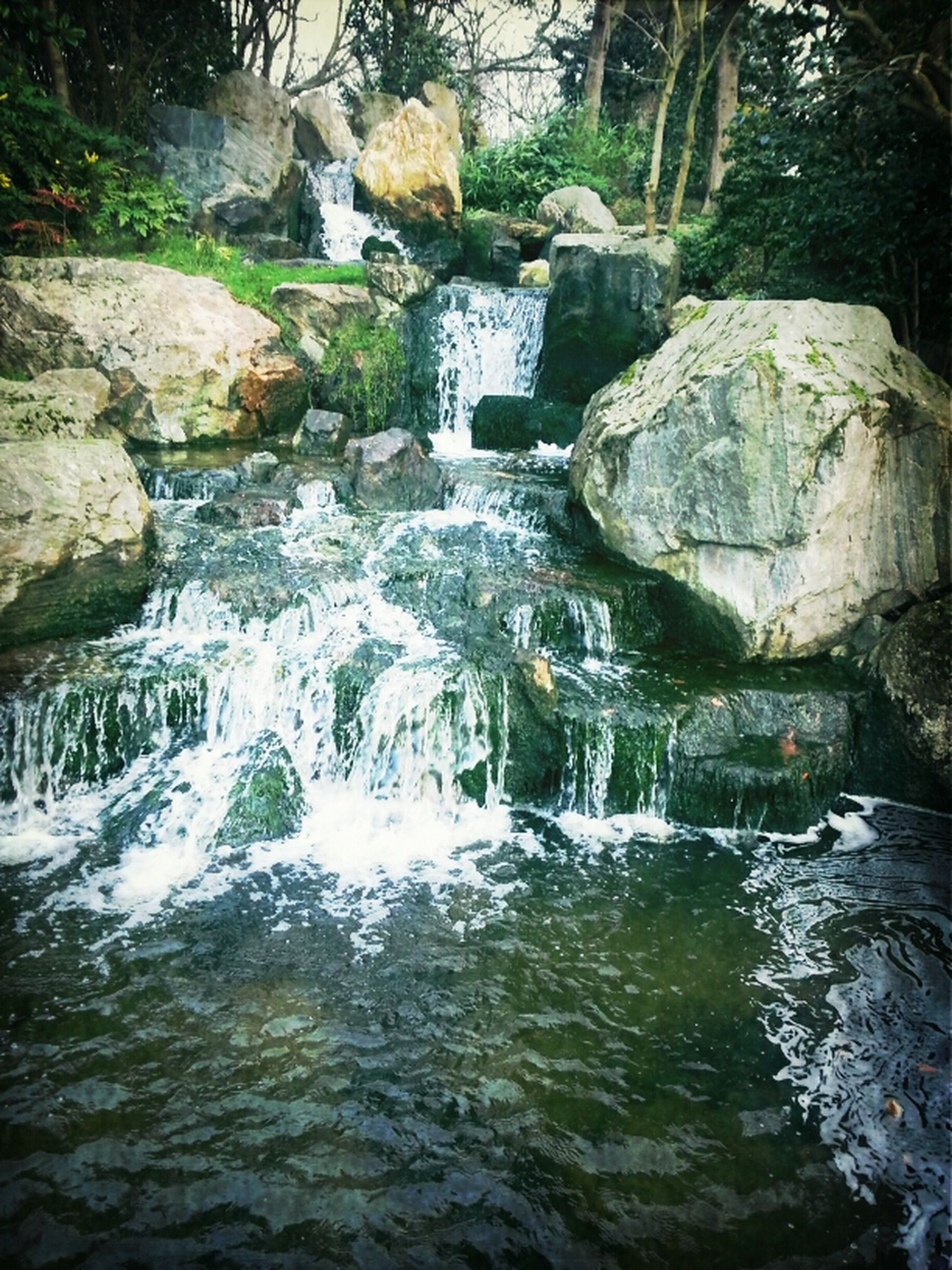 water, rock - object, flowing water, beauty in nature, nature, stream, flowing, scenics, river, tranquility, waterfront, rock, motion, waterfall, rock formation, tranquil scene, forest, day, no people, outdoors