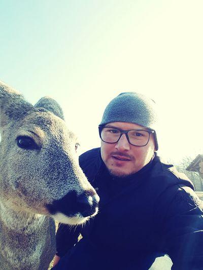 One Animal Clear Sky Day Smiling Ezi Croatia Bambi 💚 Taboriste