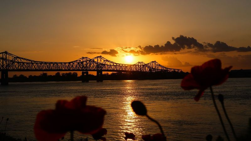 Sunset Natchez Mississippi USA Natchez Sunset Water Sky Silhouette Nature Bridge - Man Made Structure River