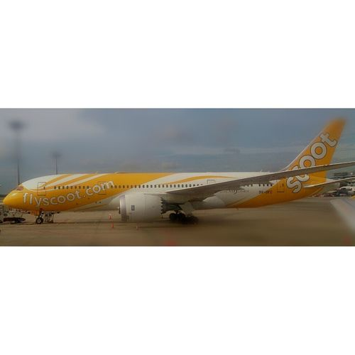 Fly Scoot Airline South East Asia Airplane Transportation Travel Aircraft First Eyeem Photo