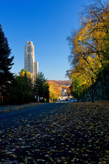 Park with buildings against sky during autumn