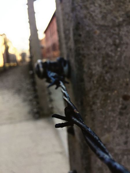 Auschwitz. Desolation First Eyeem Photo