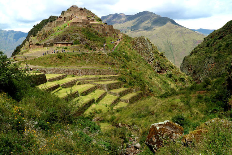 Pisac Archaeological Site in Sacred Valley of Cusco region, Peru Mountain Landscape Environment Scenics - Nature Tranquility Beauty In Nature Nature Sky Plant No People Land Rural Scene Outdoors Growth Non-urban Scene Travel Mountain Peak Ancient Civilization Pisac Cusco Sacred Valley Terraced Field Agricultural Field Valley Pisaq