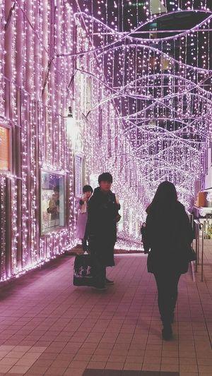 Mosaic Terrace Shinjuku Winter2016 JapanDec2016 Japan My Son My Son In Tokyo Illumination