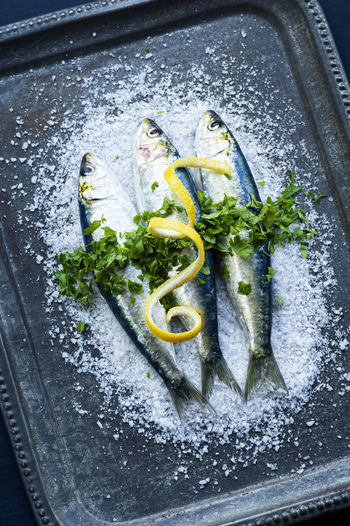 Three Fresh Whole Sardines On Kosher Salt Topped with Chopped Herbs and Twist of Lemon on Vintage Metal Tray Cooking Green Herbs Raw Salt Seafood Tray Blue Fish Fishes Food Fresh Gray Lemon Metal Nobody Portuguese Food Raw Seafood Sardine Sardines Seasoning Sustainable Three Vintage Whole