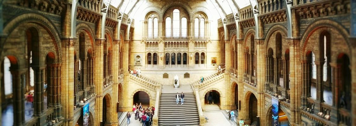 Museum Of Natural History LONDON❤ Life Architecture Travel Destinations Place Of Worship Religion Arch Travel Tourism Built Structure Indoors  Gothic Style History Spirituality No People Day