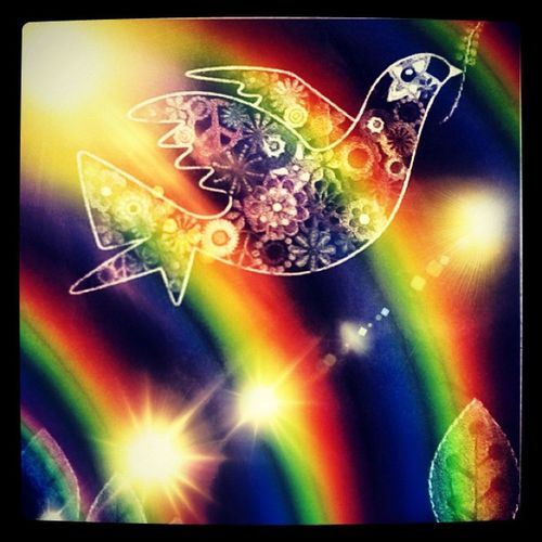 Wowfx Peace Dove IPadcover Rainbows colour shine