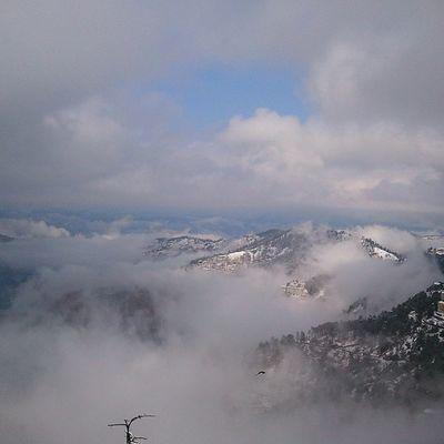 Shimla Himalayan Himachal Instadaily Snow Snowfall Ankitdogra