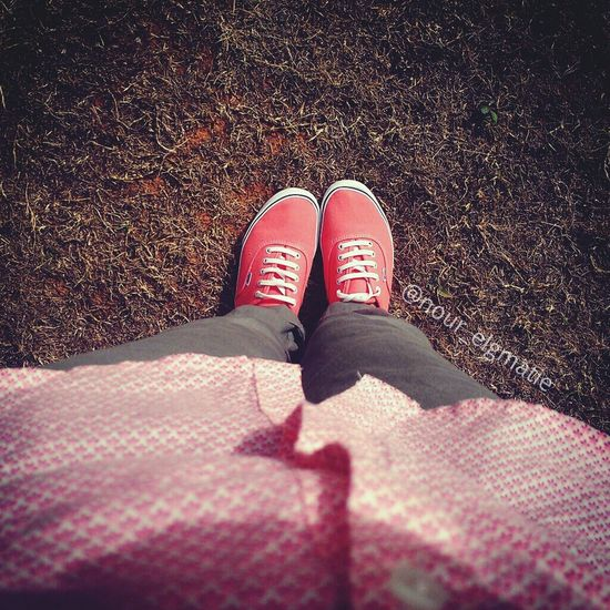 Relaxing Last Summer @Nellaprimadonna I took this photo at the garden in last year on someFridays Enjoying Life Old Pictue :p