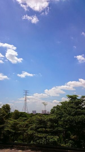 Clear sky High Tension Cable Cloud - Sky Sky Plant Tree Nature Electricity  Day Technology Electricity Pylon Fuel And Power Generation Cable Connection Power Supply Power Line  Built Structure Outdoors Beauty In Nature