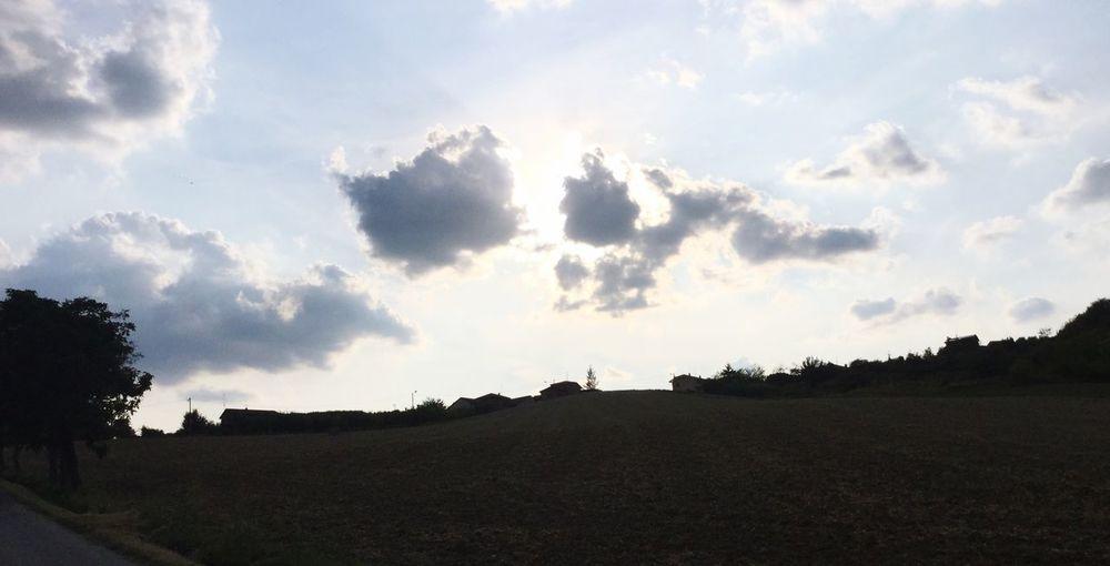 Sky Cloud - Sky Tree Plant Landscape Tranquility Nature