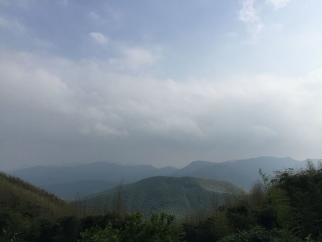 Beauty In Nature Cloud - Sky Day Hanging Out Hiking Landscape Landscapes Moganshan Mountain Mountain Range Nature No People Outdoors Scenics Sky Tranquil Scene Tranquility Travel Destinations Tree Wanderlust Woods