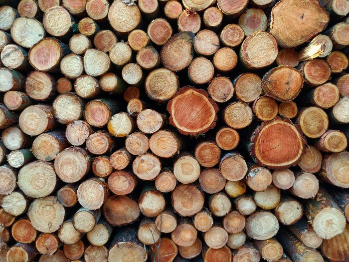 Tree Ring Textured  Forestry Industry Woodpile Backgrounds Stack Full Frame Timber Heap Fuel And Power Generation Log Pattern Pile Firewood Lumber Industry Wood Deforestation Environmental Damage Environmental Issues Fossil Fuel