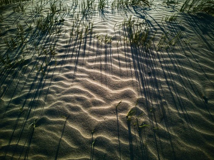 Grass and Sand Patterns Grass Sand Dune Sand Sand Patterns Landscape Beach Beauty In Nature Nature Nature_collection Nature Photography Shadows Shadow And Light EyeEm Nature Lover Backgrounds Full Frame Pattern Sand High Angle View Growing Surface Young Plant Textured