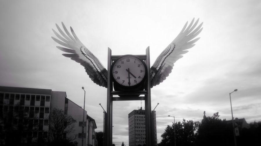 Nyíregyháza, Hungary Szarnyak Ora Wings Clock Square
