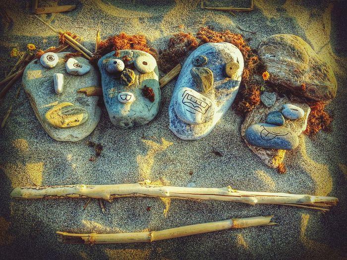Habitantes de la Playa