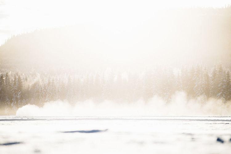 Q Non-urban Scene Cold Temperature Power In Nature #Audi Motion Beauty In Nature Winter Cold #Q