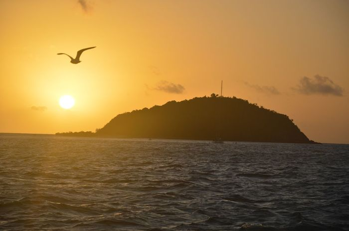 Hello World Enjoying Life Life Is A Beach Sunset No filter, we took that google-like snapshot @whitsundays in australia on our sailing boat.