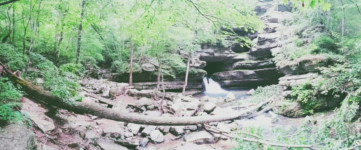 Blanchard Springs in Northern Arkansas ♡ Hated seeing so many trees down from the last round of storms that blew through. Still beautiful to visit ♡ Landscape_Collection The Explorer - 2014 EyeEm Awards EyeEm Nature Lover AMPt_community