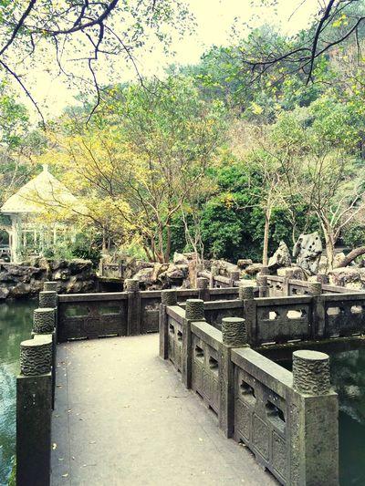 River China China Style Cold Days Tree Yellow Leaf 🍂 Bridge China Bridge