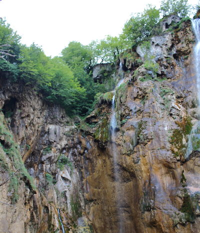 Croatia Djmarcop Trip No People Day Beauty In Nature Scenics Outdoors Nature Forest Tree
