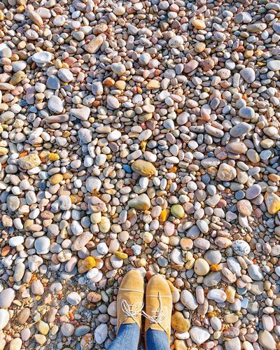Low section of person standing on pebbles at beach