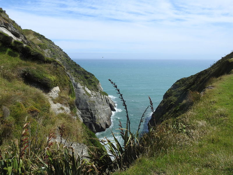 Coastline Golden Bay New Zealand Beauty New Zealand Impressions New Zealand Landscape New Zealand Scenery Travel Destinations
