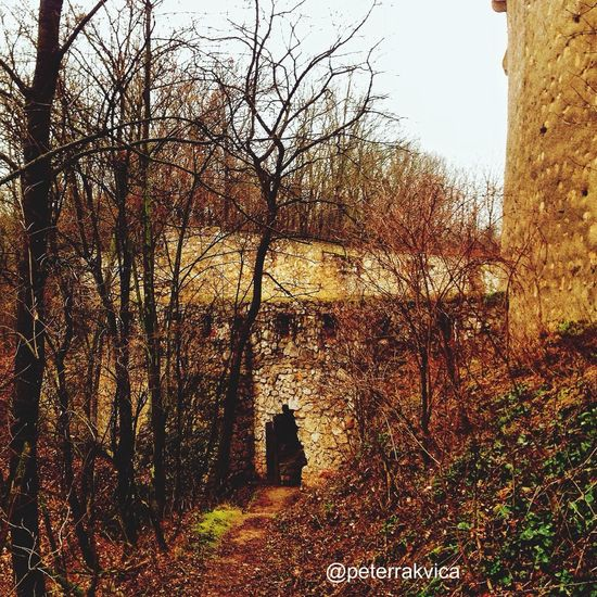 Southern fortification, the castle of Trencin #fortification Castle #trencin #walls #bulwark Wall #nature #trees #snapseed #vscocam #instagram #iphonephoto Iphonephotography