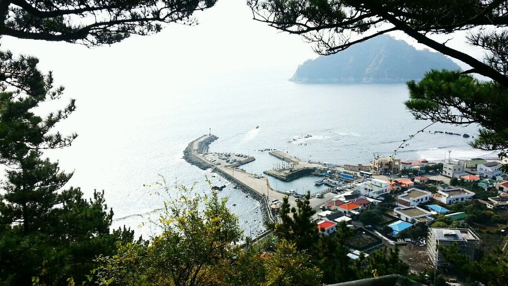 Jejigioreum Seogwipo JEJU ISLAND  South Korea Beautiful View Travel Enjoying Life