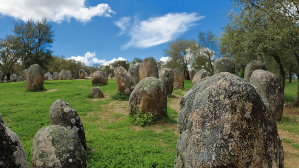 Ancient monoliths spread over the green grass under a blue sky with a few white clouds Ancient Ancient Civilization Beauty In Nature Cloud - Sky Day Grass Landscape Menir Monolith Nature No People Outdoors Prehistoric Rock - Object Sky Stone Tranquil Scene Tranquility Travel Destinations Tree
