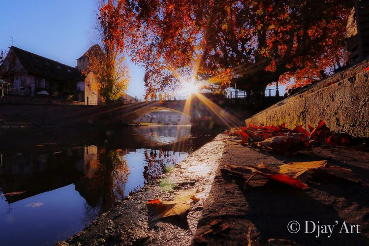 L'automne pose